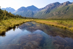 Day-02-Eagle-River-Nature-Center-Alaska