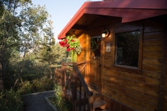 Day-02-Tundra-Rose-Cottage-Glenn-Highway-Alaska