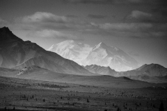 Day-05-Denali-Black-and-White