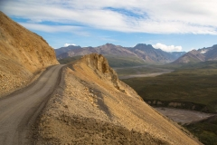 Day-06-Denali-Road-with-Denali-Backcountry-Adventure