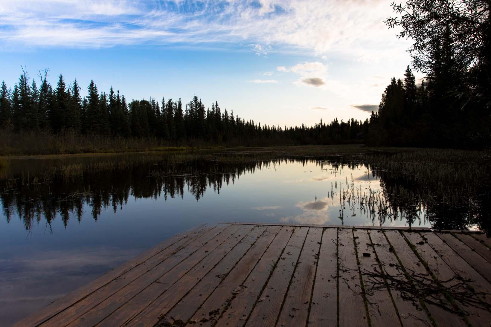 Day-07-Moose-Walk-Cabin-Chena-Slough-North-Pole-Alaska