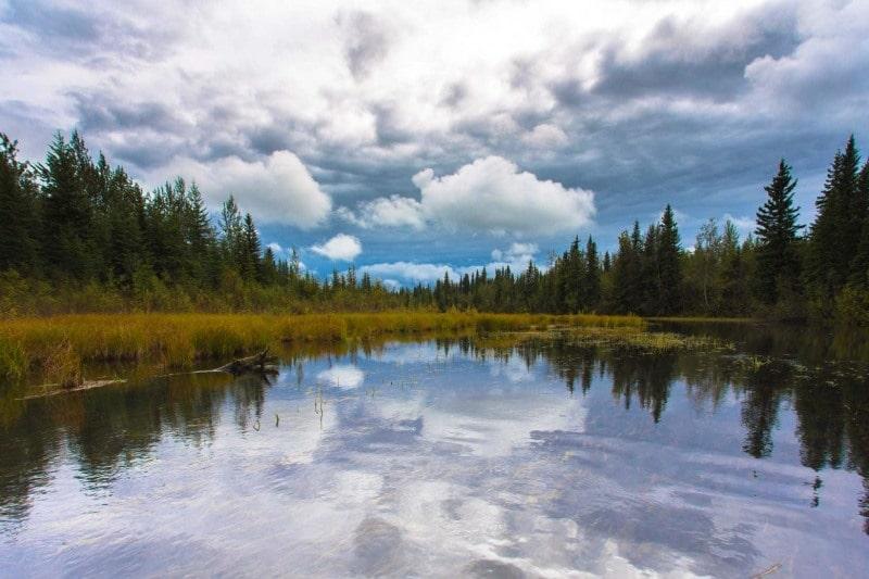 Day-09-Chena-Slough-Moose-Walk-Cabin-North-Pole-Alaska