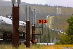 Day-10-Trans-Alaska-Pipeline-System-Milepoint-562