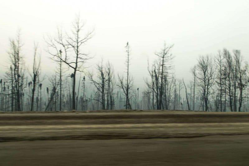 Day-17-Fire-Damage-Sterling-Highaway-Alaska