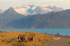 Day-19-View-from-Captains-Suite-Homer-Alaska