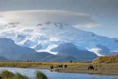Katmai-National-Park-Kenai-Peninsula-Alaska