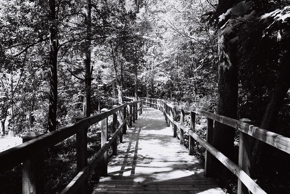 Boardwalk_Lincoln_Cabin-00083