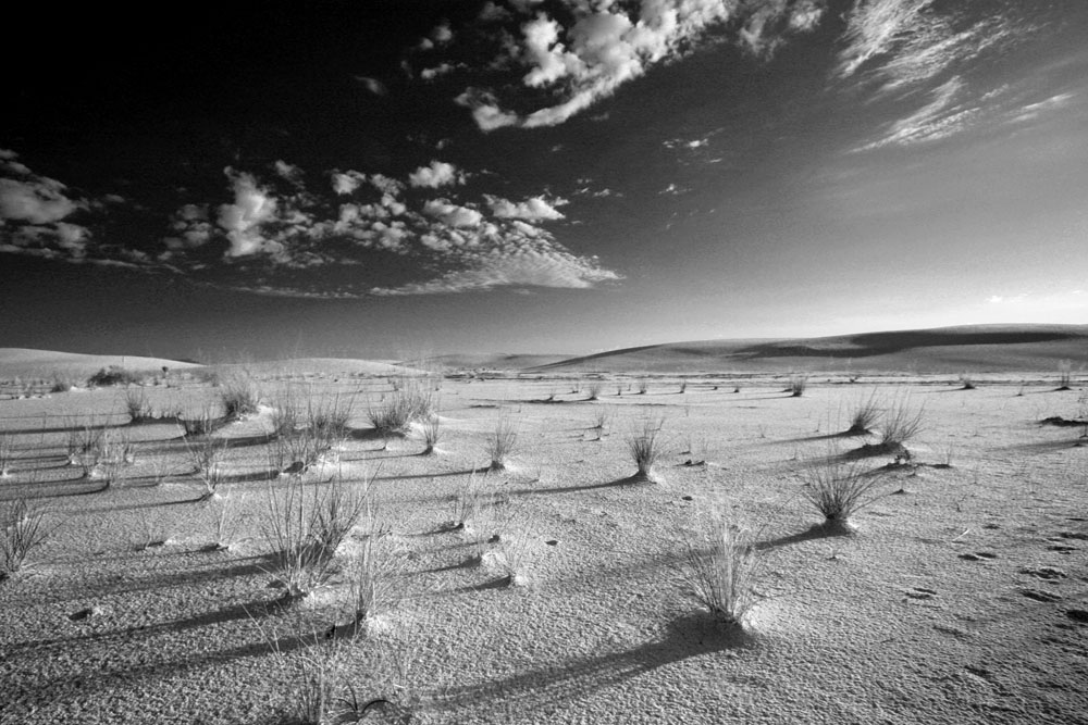 Interdune Flats, White Sands