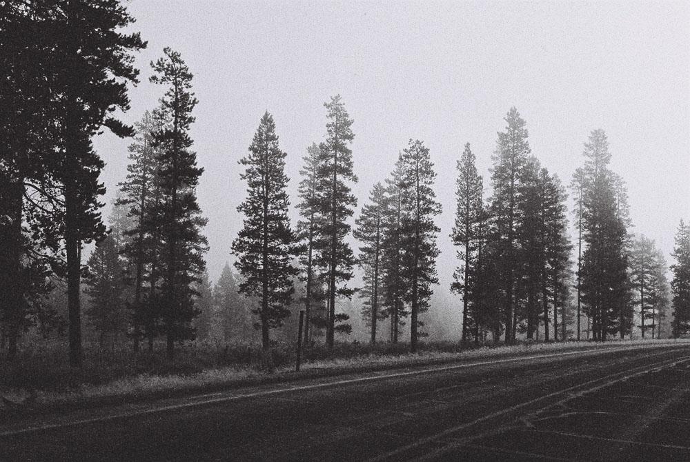 Oregon Outback Fog