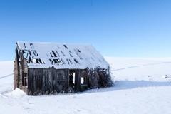 Idaho Cabin