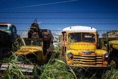 Roswell School Bus