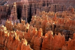 Hoodoos, Bryce Canyon National Park-Utah-00038