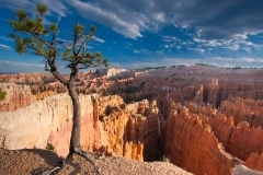 Bryce Canyon National Park, Sunset Point, Utah
