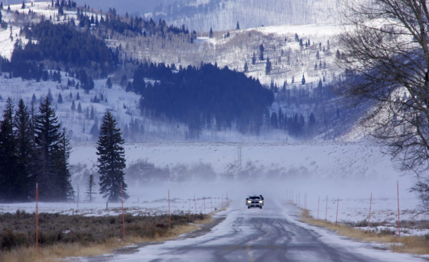 Day 4: Tetons to West Yellowstone