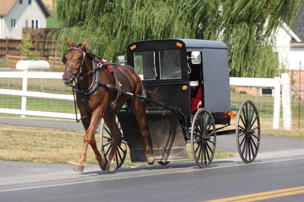 09-Amish-1024x681.jpg